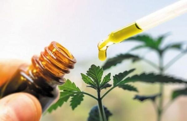 تولید نانو ذراتی برای رهایش آرام عصاره گیاهان در بدن